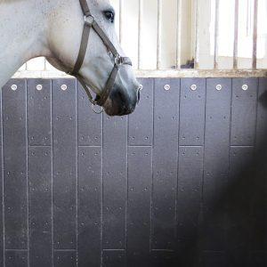 At ahır duvar kaplaması