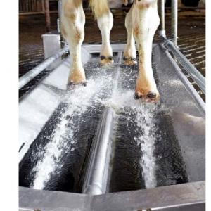 Otomatik Hayvan Ayak Banyosu
